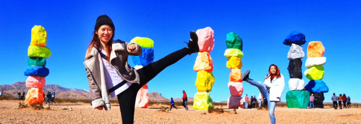 Seven Magic Mountains Trip