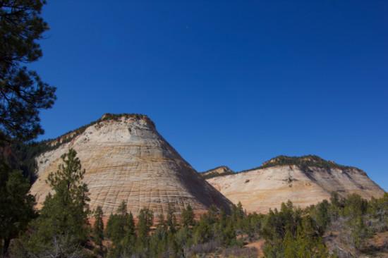 Checkerboard Mesa Zion National Park