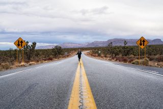 This is quickly becoming one of everyone's favorite stops along our Grand Canyon West, Hoover Dam, Seven Magic Mountains Day Tour. A bonus stop to see the Joshua Trees often turns into a photo shoot in the middle of the road!  Thanks to @cassiescompass for sharing! . . . . . . #joshuatree #arizonajoshuatreeforest #maxtourvegas #cassiescompass #grandcanyonwest  #travelpics #travelphoto #travelmemories #travelmoments